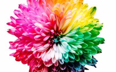 10 Maneras de Usar la Psicología del Color en tu Hogar
